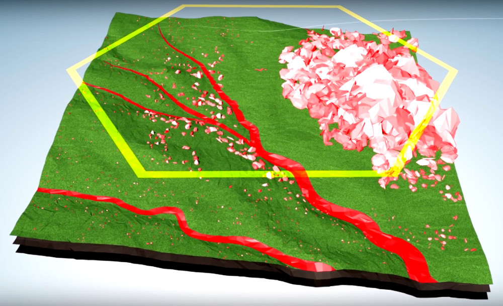 Segmentation of territory for planting with drones